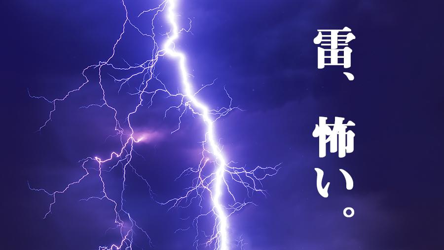 雷、怖い。